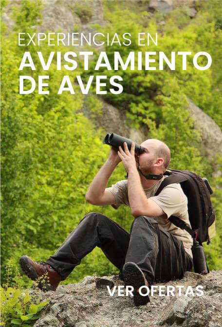 Promociones vivemundo.com.co